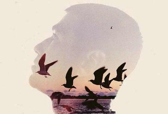 reflexo-homem-mar-gaivotas