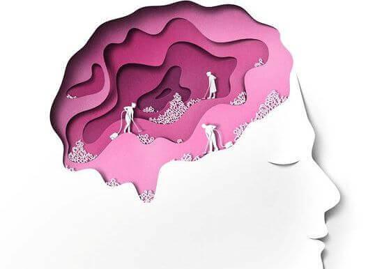 cerebro-cor-de-rosa