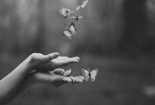 maos-borboletas