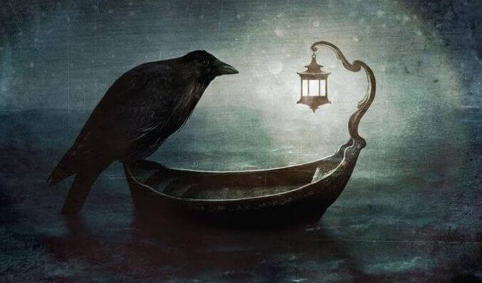 corvo-em-barco