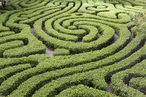 labirinto-verde