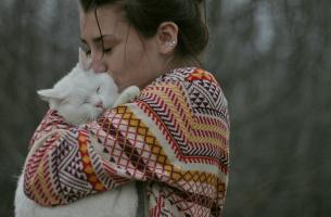 Animais de estimação que resgatam humanos: quando somos salvos por um animal