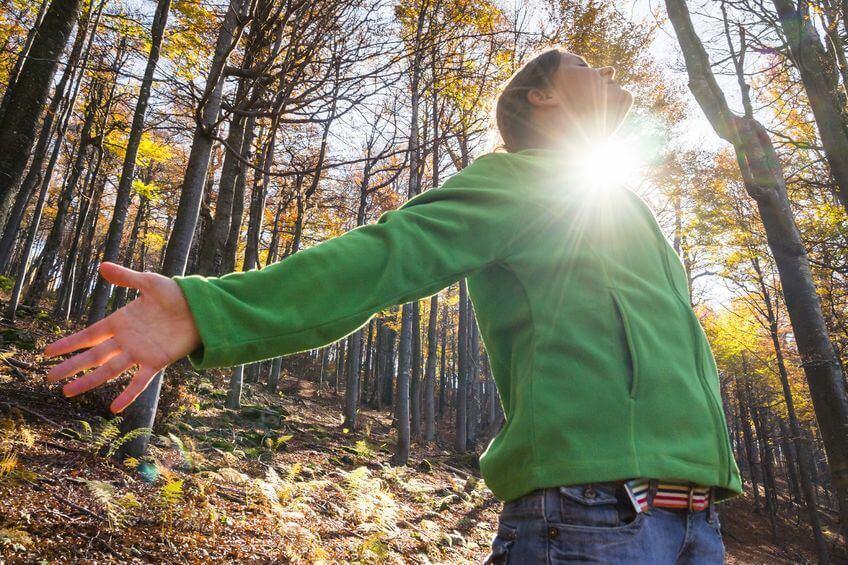 caminhar-pela-floresta