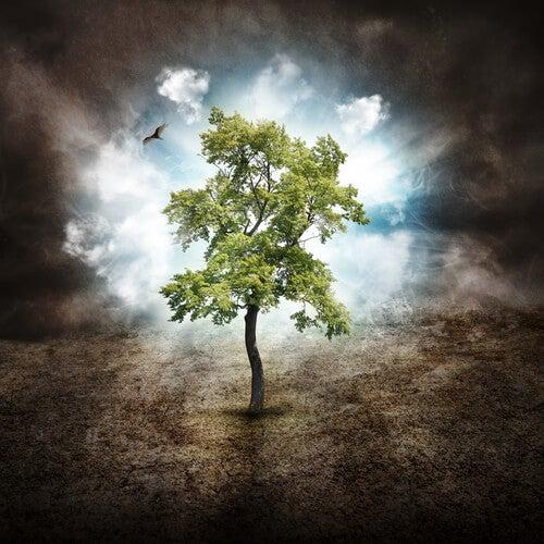 aceitar o crescimento natural