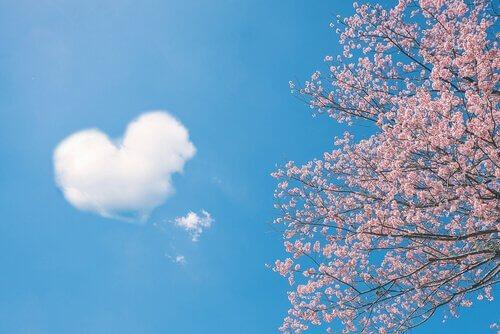 5 provérbios chineses sobre o amor