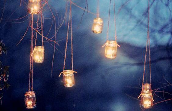 luzes-floresta