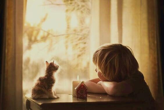 menino-com-filhote-de-gato