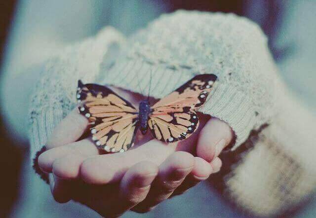 maos-segurando-borboleta