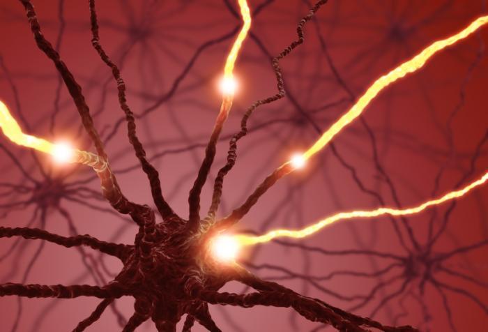 Você sabe o que é a serotonina e que efeitos tem em seu corpo?
