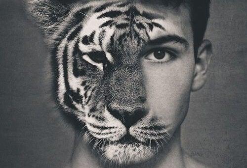 Rosto metade homem e metade tigre