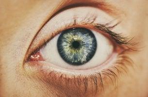 Além do olhar visível