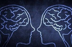 Neurônios espelho: a imitação e a empatia