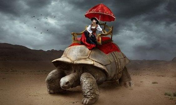 homem-andando-em-tartaruga-gigante