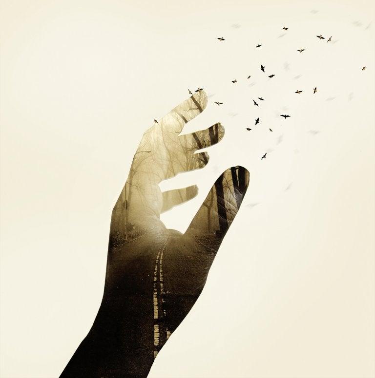 A vida se encarregará de explicar as coisas que não fazem sentido agora