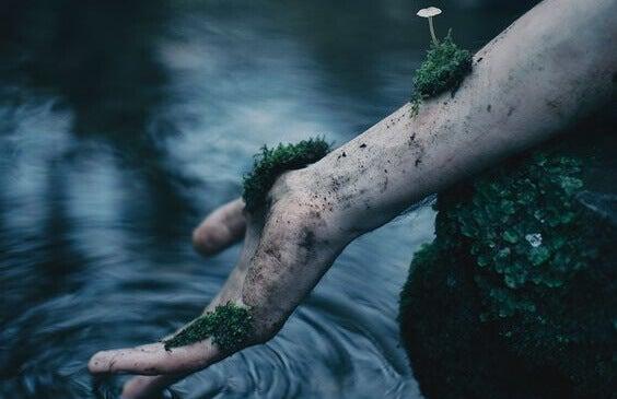 Plantas crescendo em braço