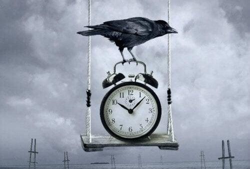 Corvo sobre relógio