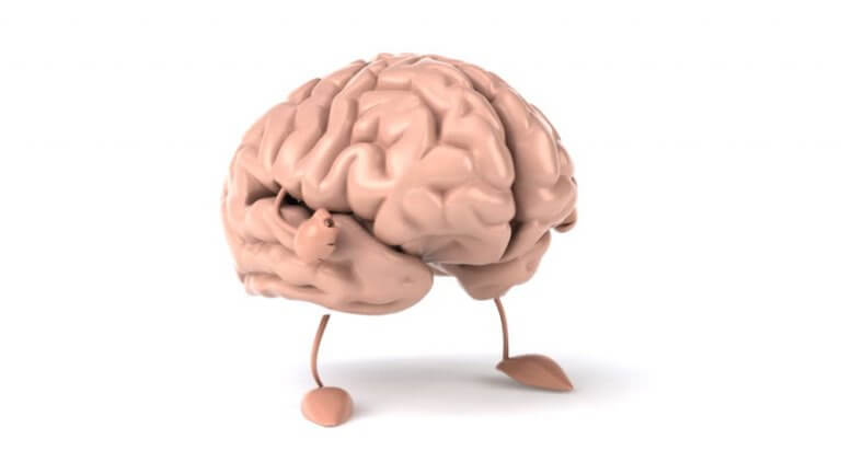 O cérebro muda em contato com a natureza