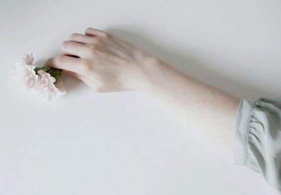 Mão segurando pequenas flores