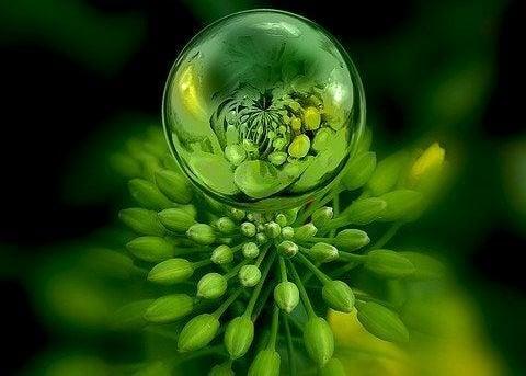 Verde: psicologia das cores