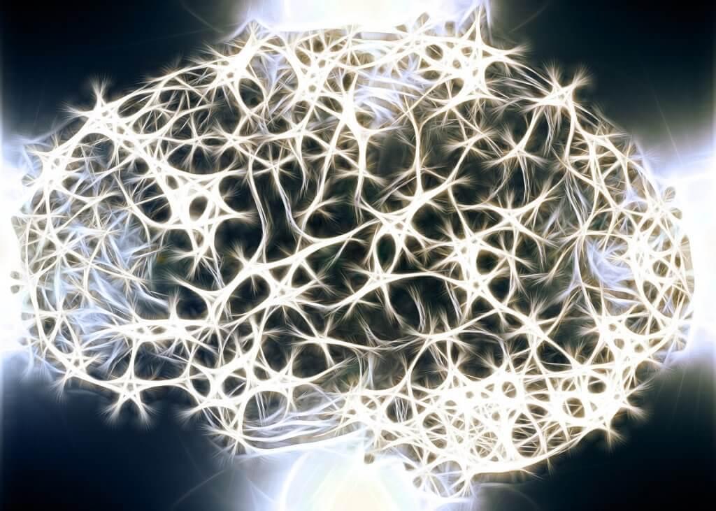 Por que a substância branca do nosso sistema nervoso é tão importante?