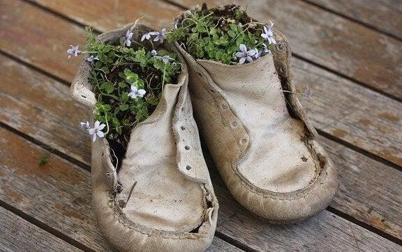 Flores em sapatos