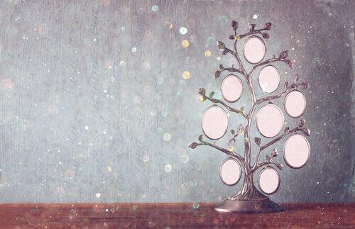 Árvore genealógica: uma ferramenta de crescimento e cura