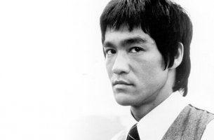 Os 7 princípios da adaptação, segundo Bruce Lee