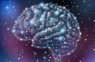 Os mistérios do cérebro
