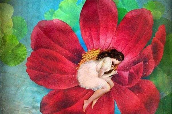 Mulher deitada em flor