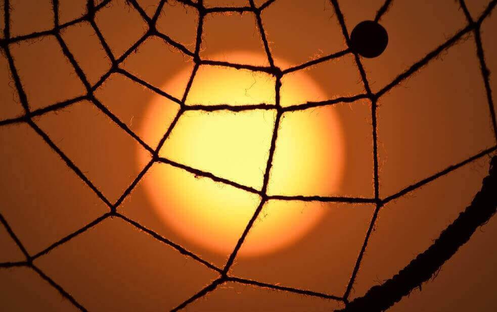 Sol visto por teia de aranha