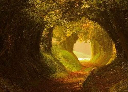 Luz no fim do túnel após a depressão