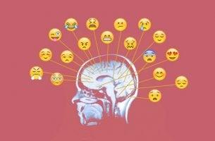 Trabalhar as emoções: conheça os melhores exercícios e atividades