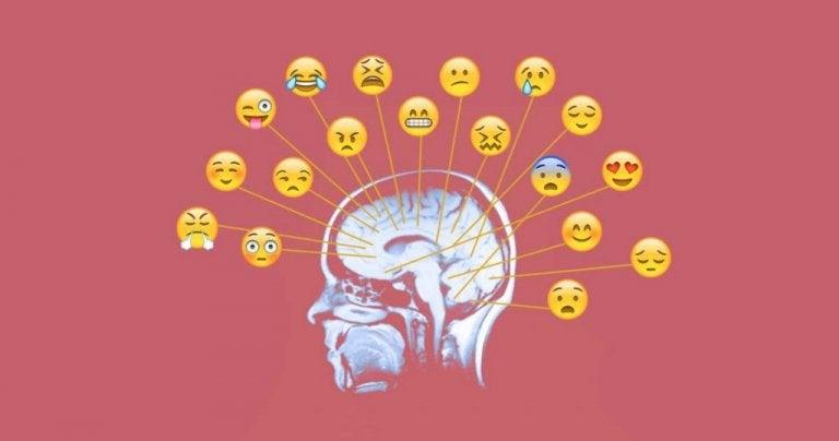 Conheça os melhores exercícios e atividades para trabalhar as emoções
