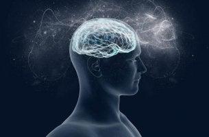 A importância do magnésio para o nosso cérebro