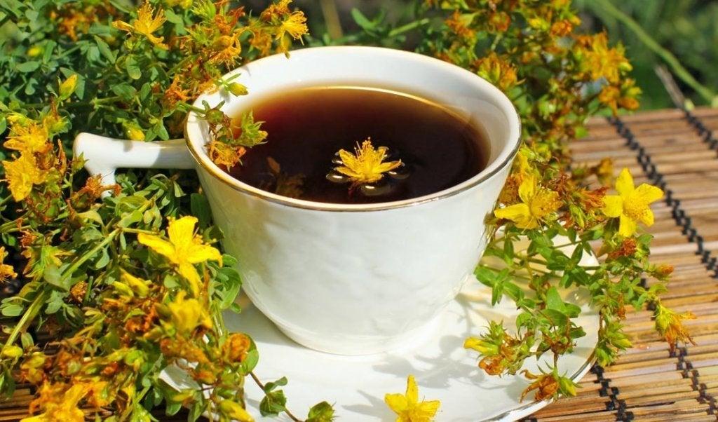 Chá de hipérico contra a depressão