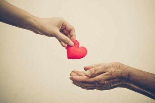 Razões para cultivar a gentileza