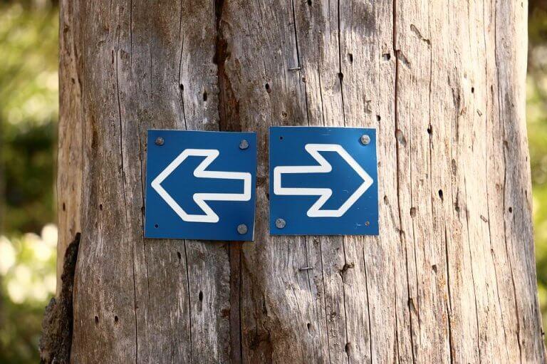 Qual caminho escolher?