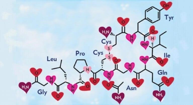 Estrutura química da oxitocina