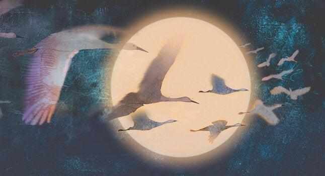 Pássaros voando diante de lua cheia
