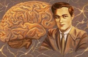 O que sabemos sobre o funcionamento do cérebro