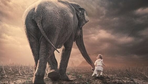 Menina andando com elefante