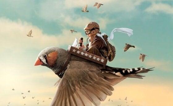 Menino voando em passarinho