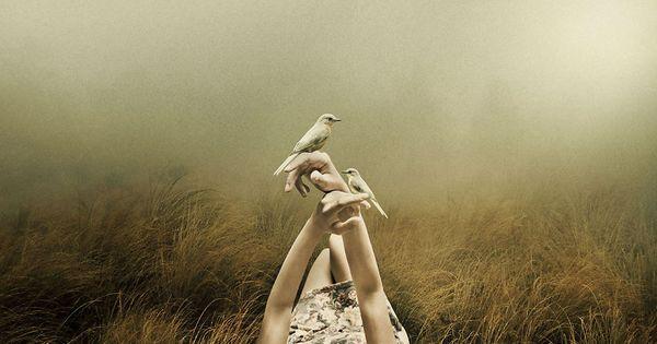 Mulher deitada na grama com pássaros nas mãos