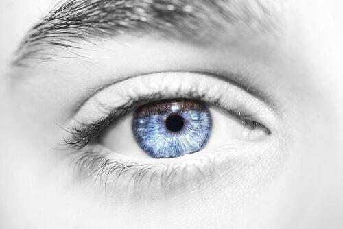 Olho azul em rosto em preto e branco