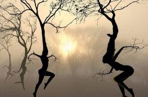 A dança emocional das árvores