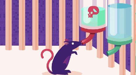 Experimento com ratos sobre os efeitos das drogas