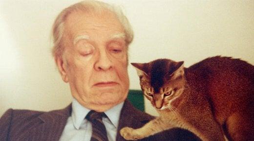 Jorge Luis Borges com seu gato