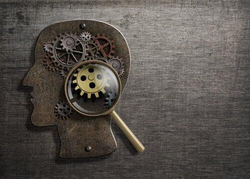 Conheça nossos 8 processos psicológicos básicos