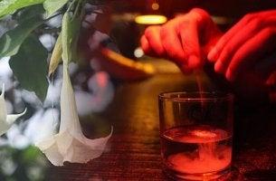 Escopolamina: a droga anuladora da vontade