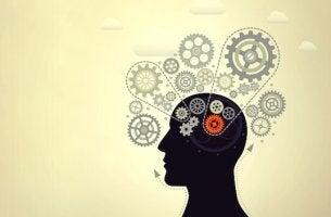 Dicas para aumentar a inteligência